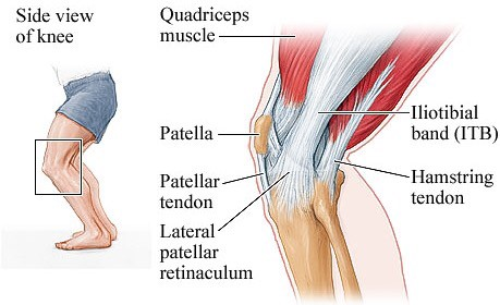 Knee arthritis injury knee pain causes and symptoms dr kapil knee anatomy front view knee anatomy side view ccuart Choice Image